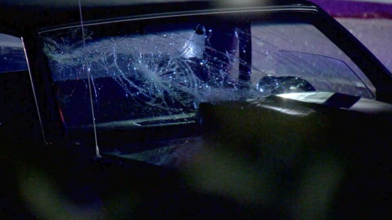 Pedestrian dies after being struck by vehicle