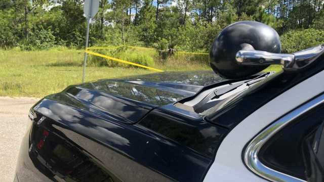 Police investigating death in North Port