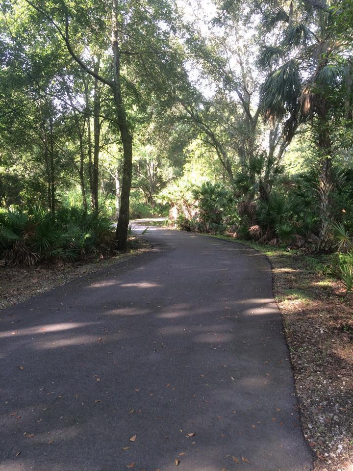 New Tampa Nature Park by Rhonda DelCampo.jpg