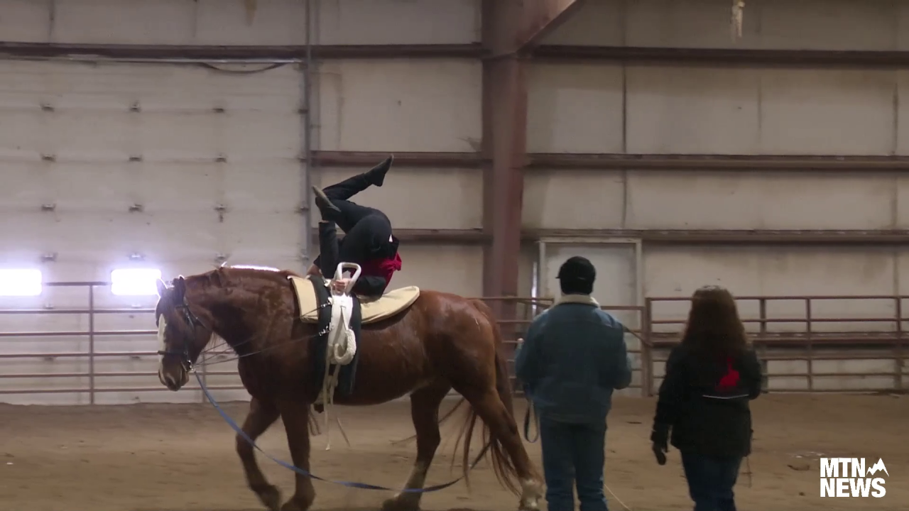 406 Arena hosts horse fair and 4-H Camp