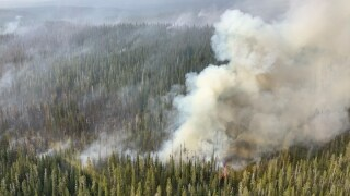 Lone Star Fire grows to 1,500 acres, roads subject to closure in Yellowstone National Park