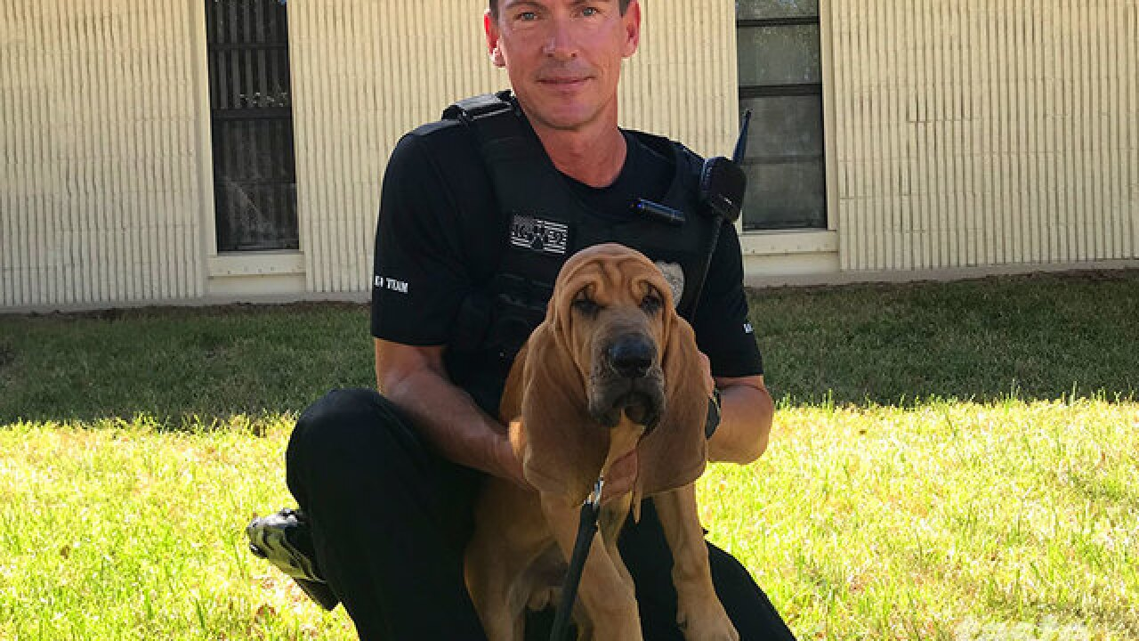 Meet Bandit, JPD's newest bloodhound named in Burt Reynold's honor