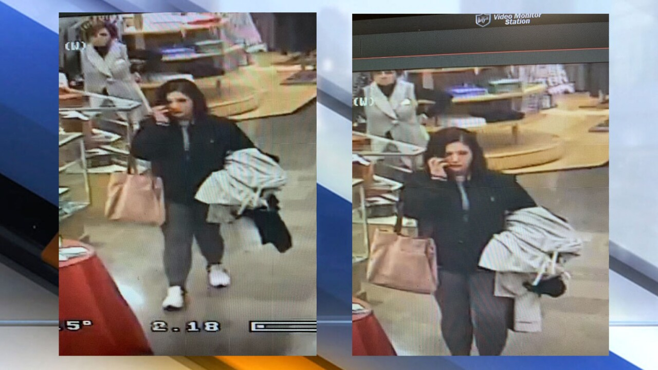 North Olmsted shoplifter
