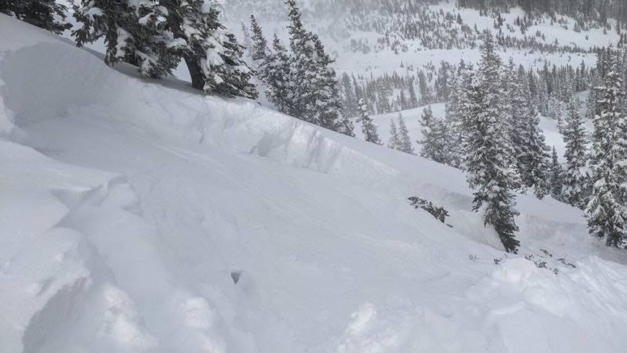 Jan. 23, 2021 avalanche_near Red Lady skin track_CAIC