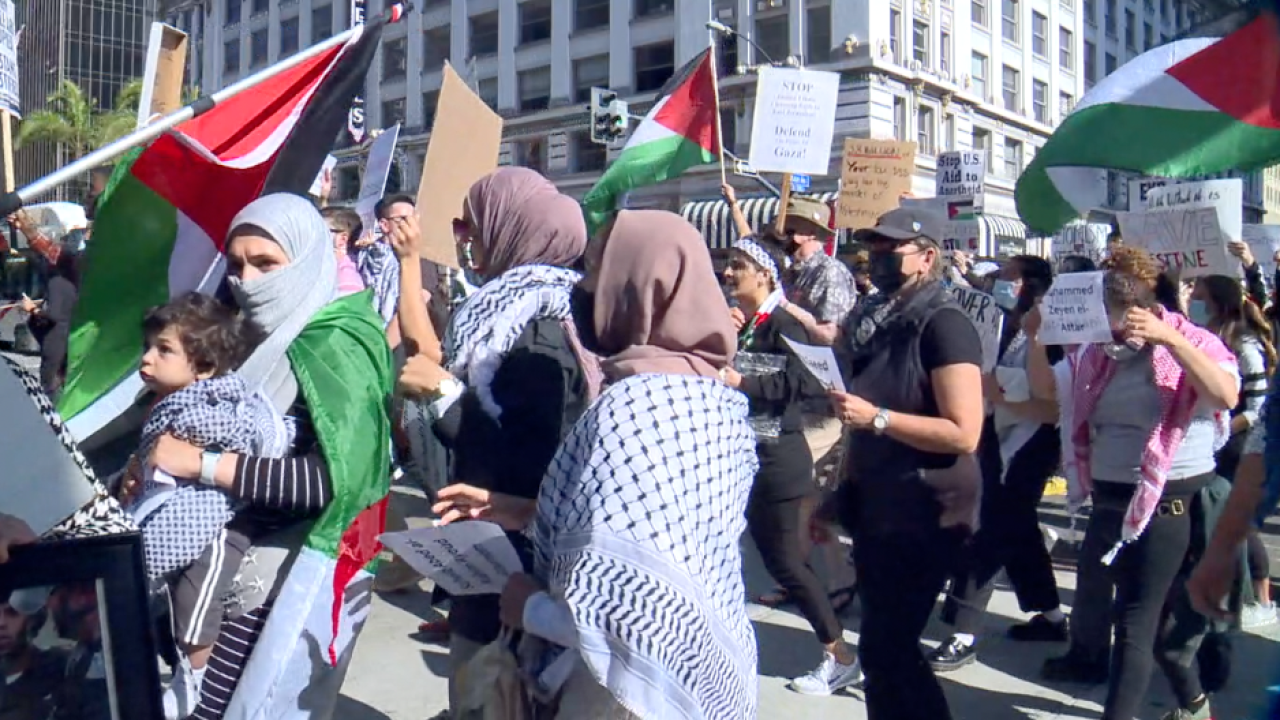 Palestine Rally in Downtown San Diego.png