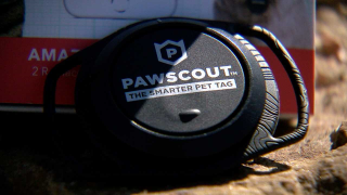 New pet tag hits store shelves in Colorado