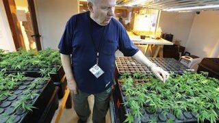 Pot legalization bid in California gains powerful backers