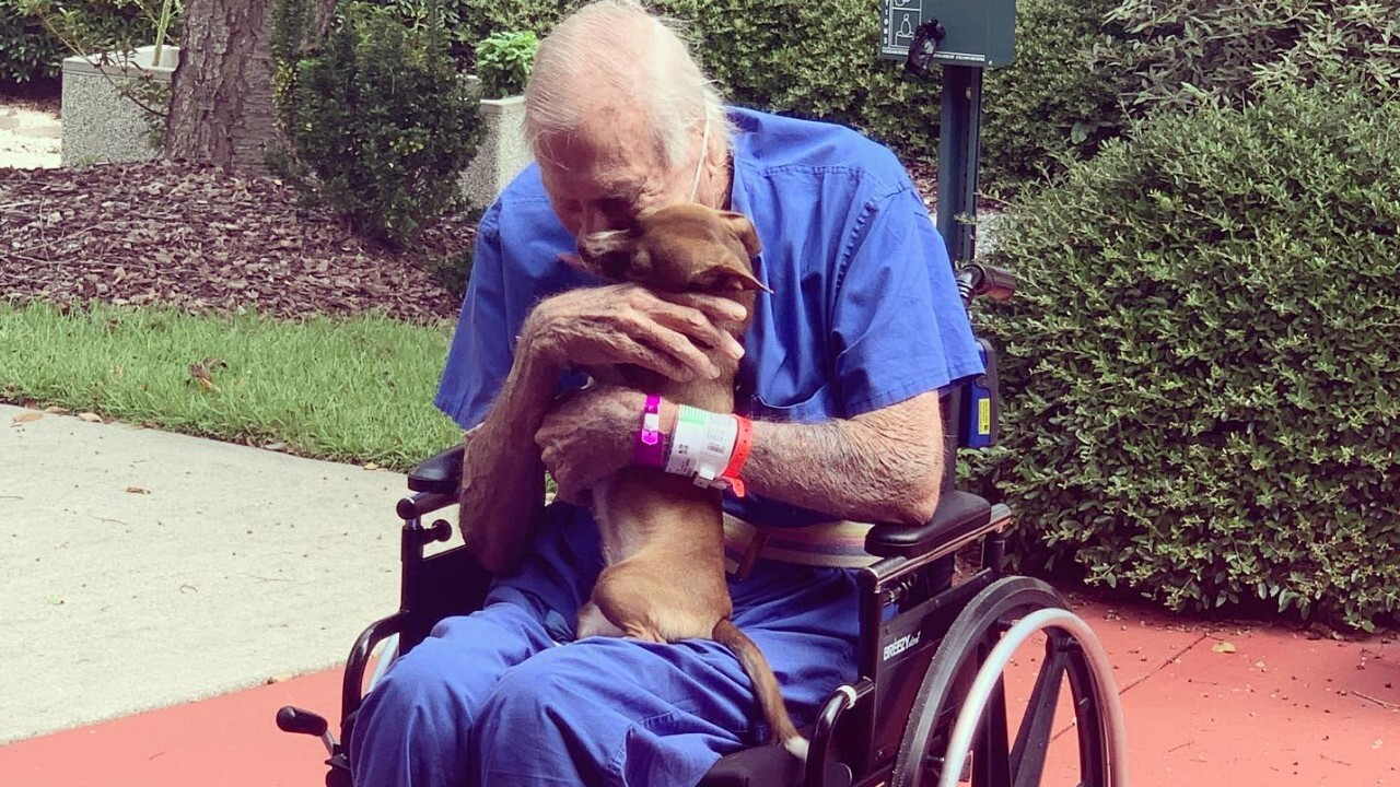 Navy veteran reunites with pet Chihuahua who he says saved his life on houseboat