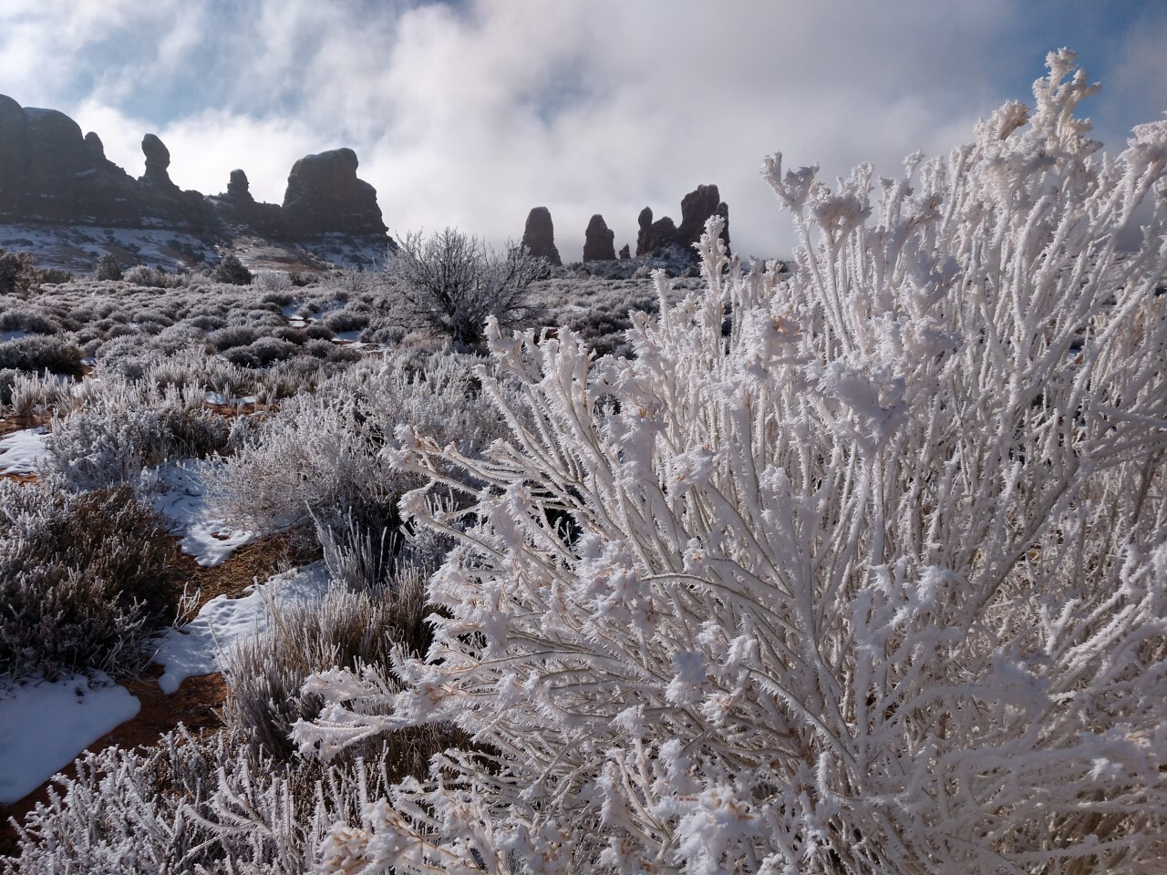 thumbnail_Cuy Photo in Arches Natl Park 12-19-20.jpg