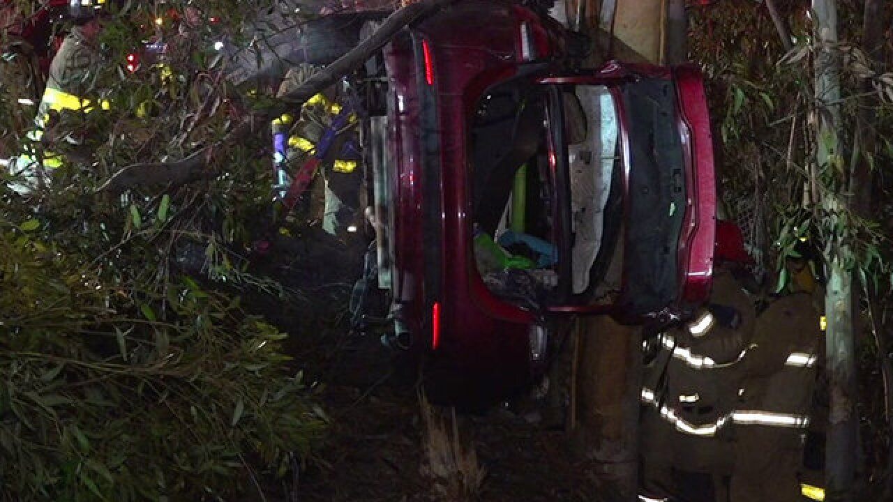 Driver rescued after car crashes into trees