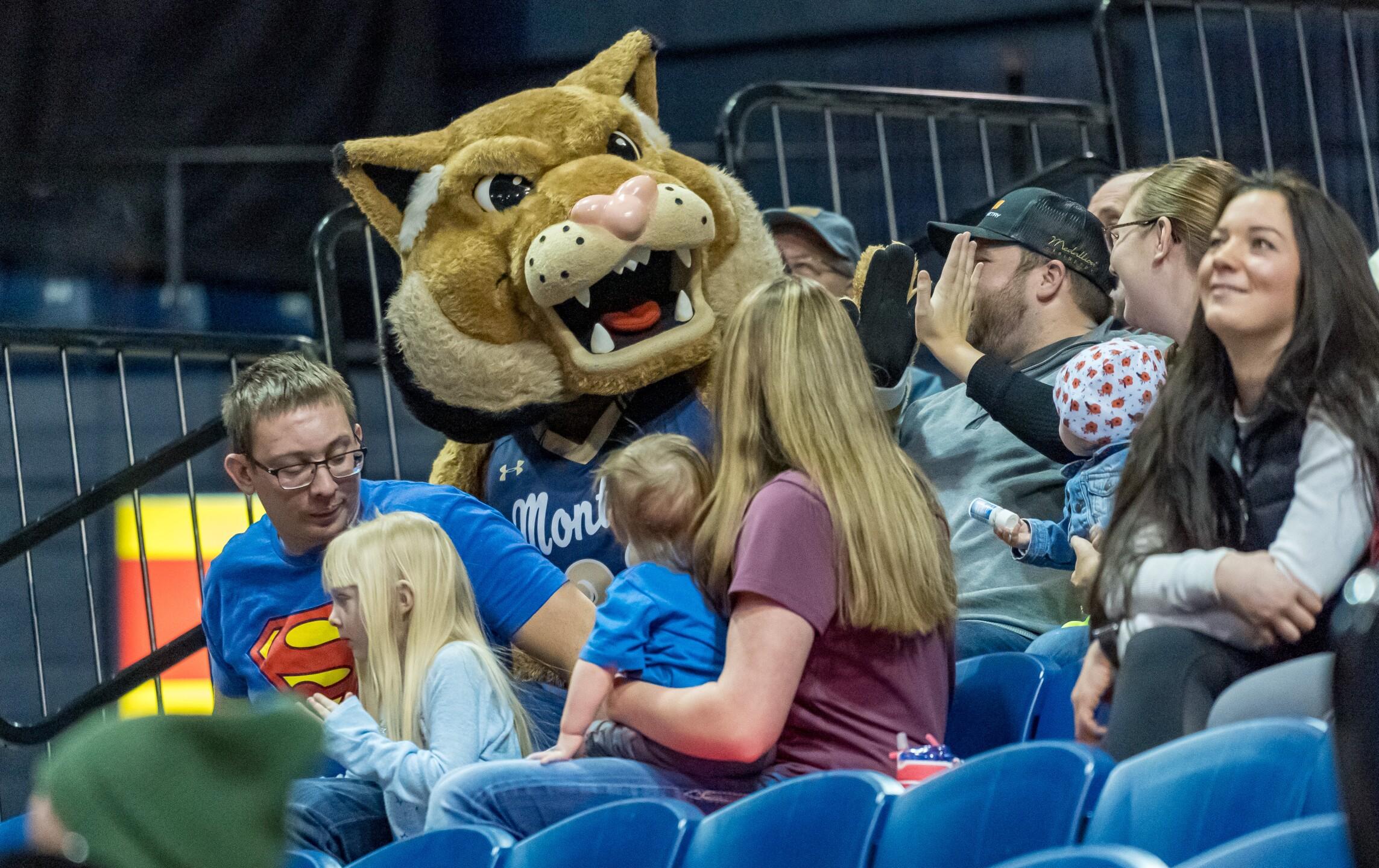 Montana State Bobcats basketball Champ