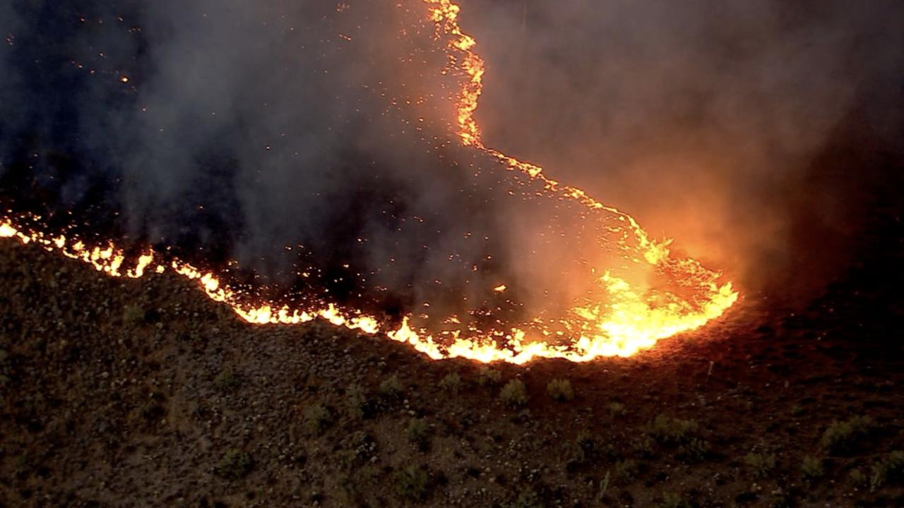 Bush Fire - June 16, 2020