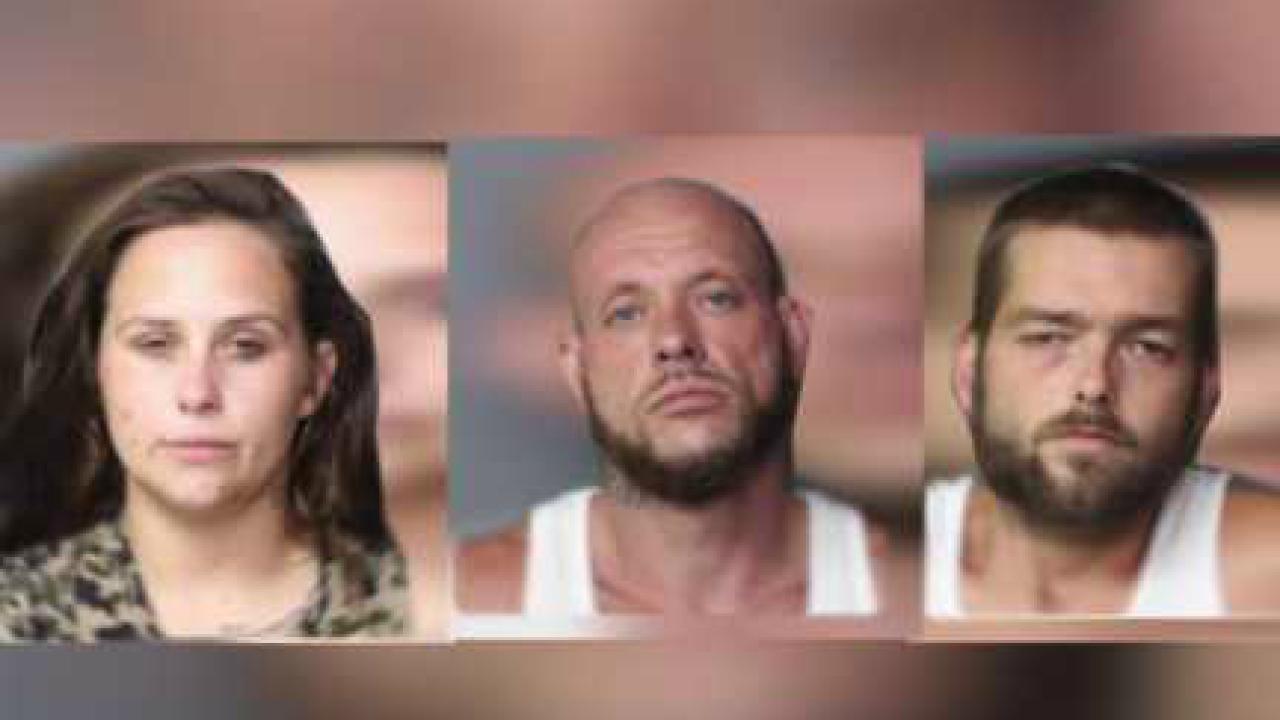 New violent details revealed about Norfolk carjacking that left man shot in ear,shoulder