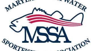 Maryland fishermen seek fresh start as MSSA flounders