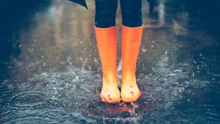 wx-rainboots.png