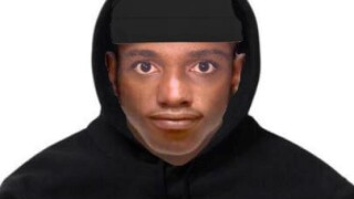 Indecent Exposure Suspect.jpg