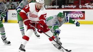 Adam Erne Red Wings Hurricanes Hockey
