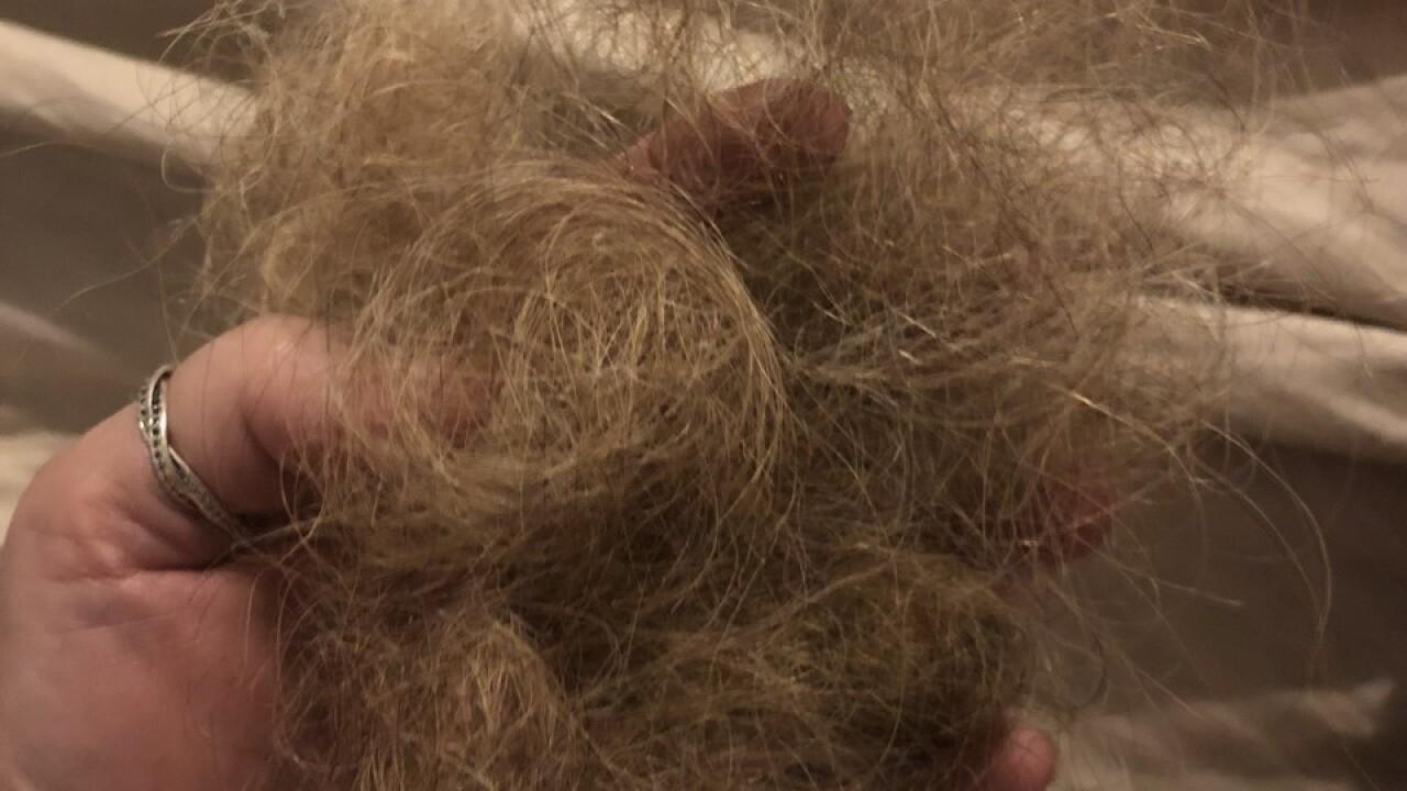 Pam Benson hair clump