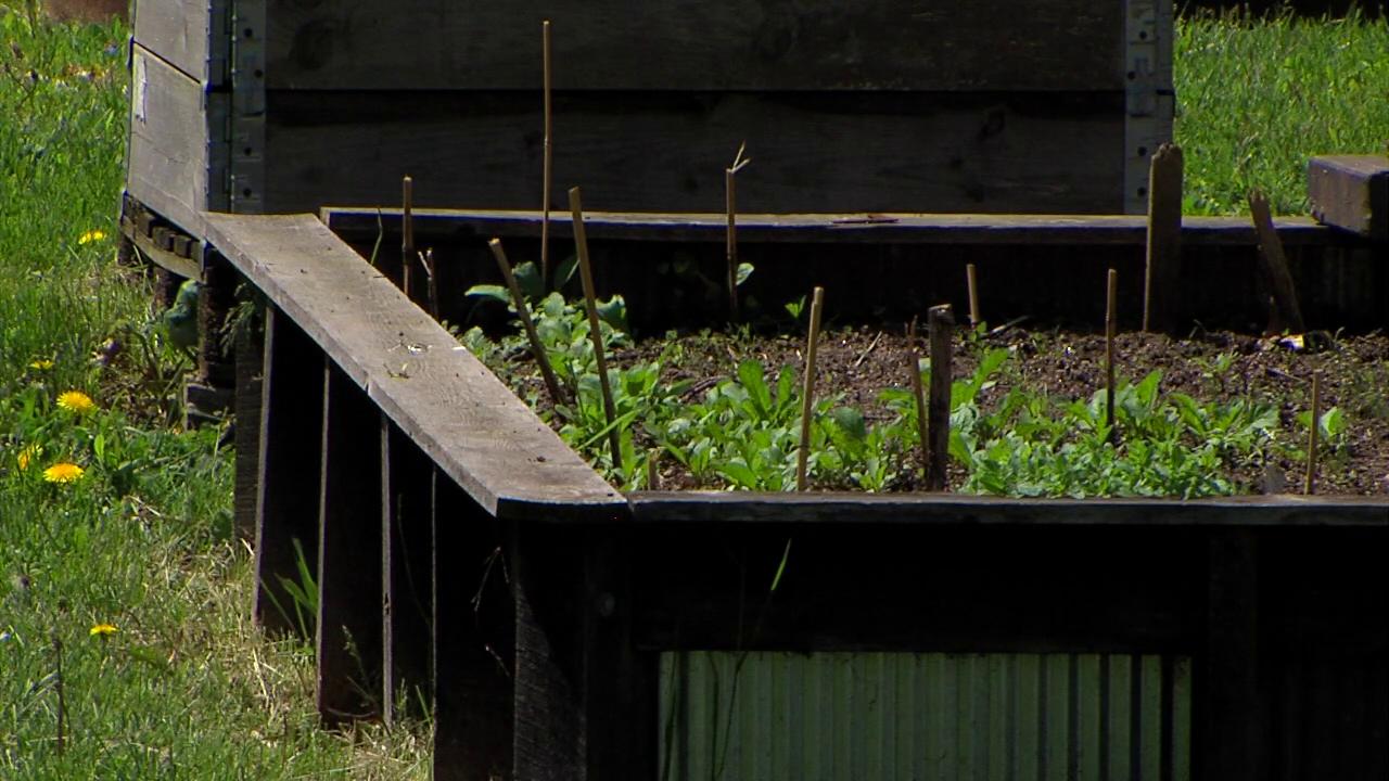 Mansfield micro-farm