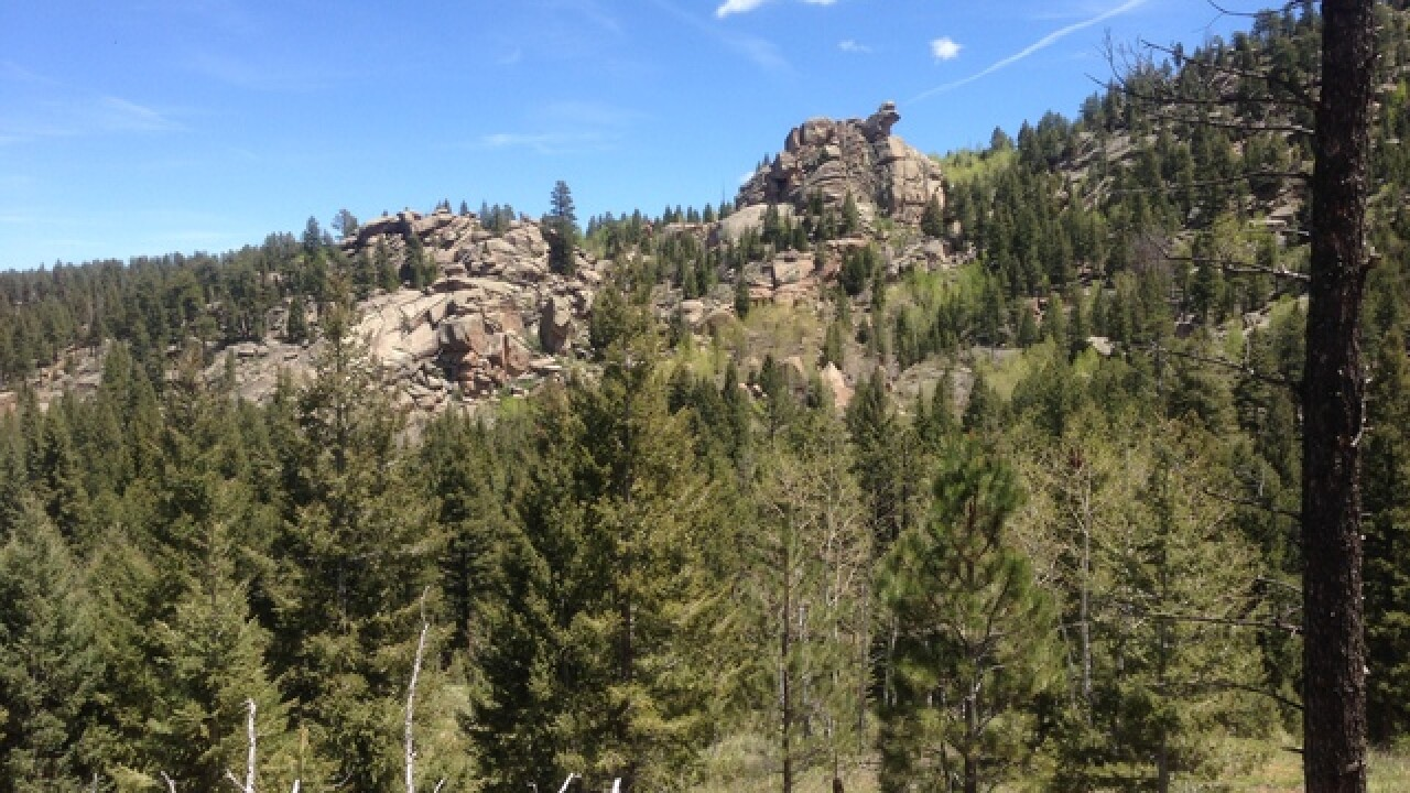 Hiking the Colorado Trail: Segment 3