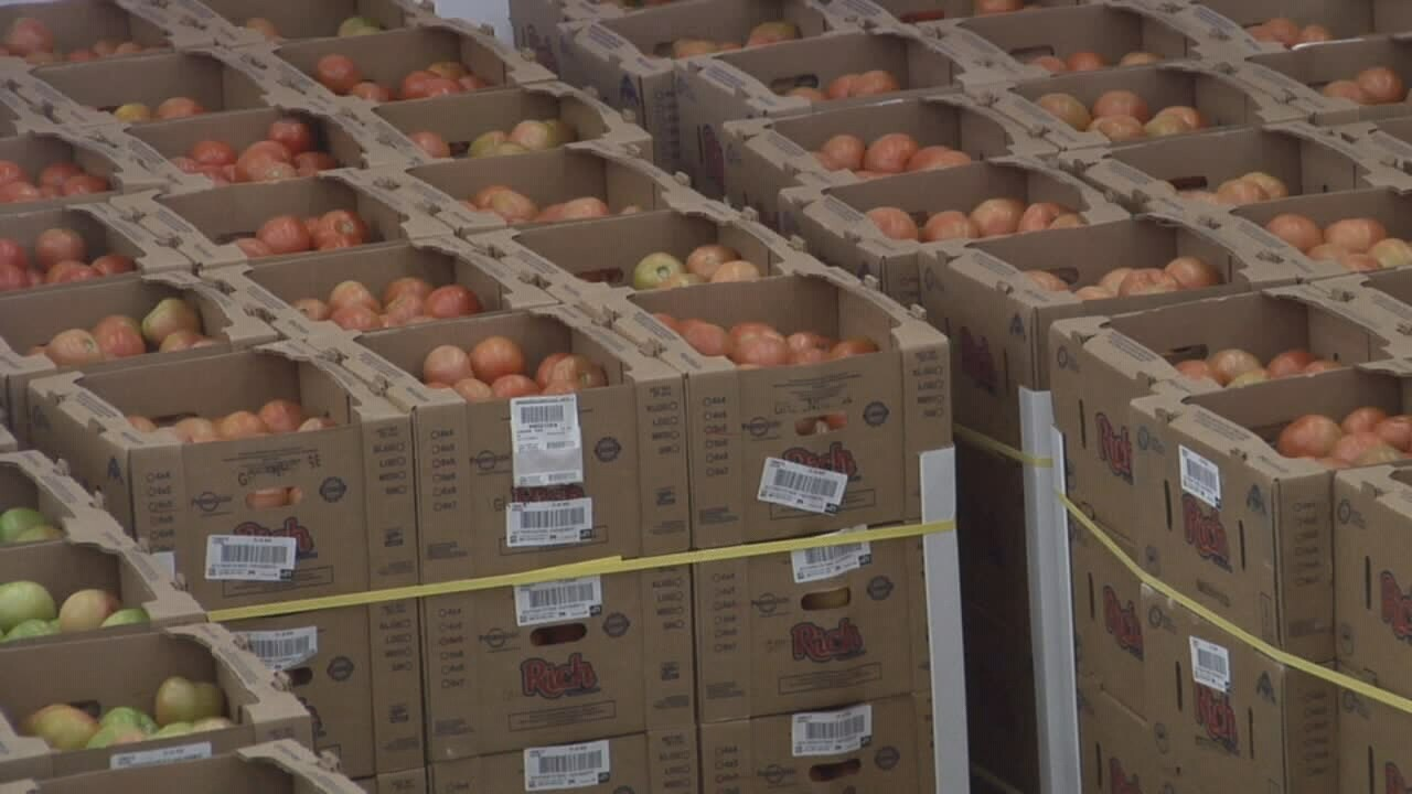 2019-05-31 Tariff react-tomatoes.jpg