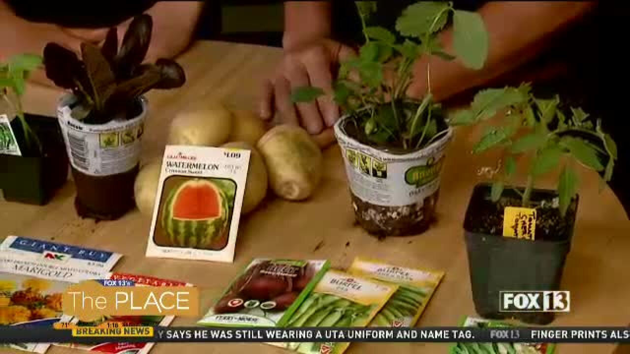What you need to know for vegetablegardening
