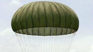 Skydiver injured, lands in tree after jump in Sebastian