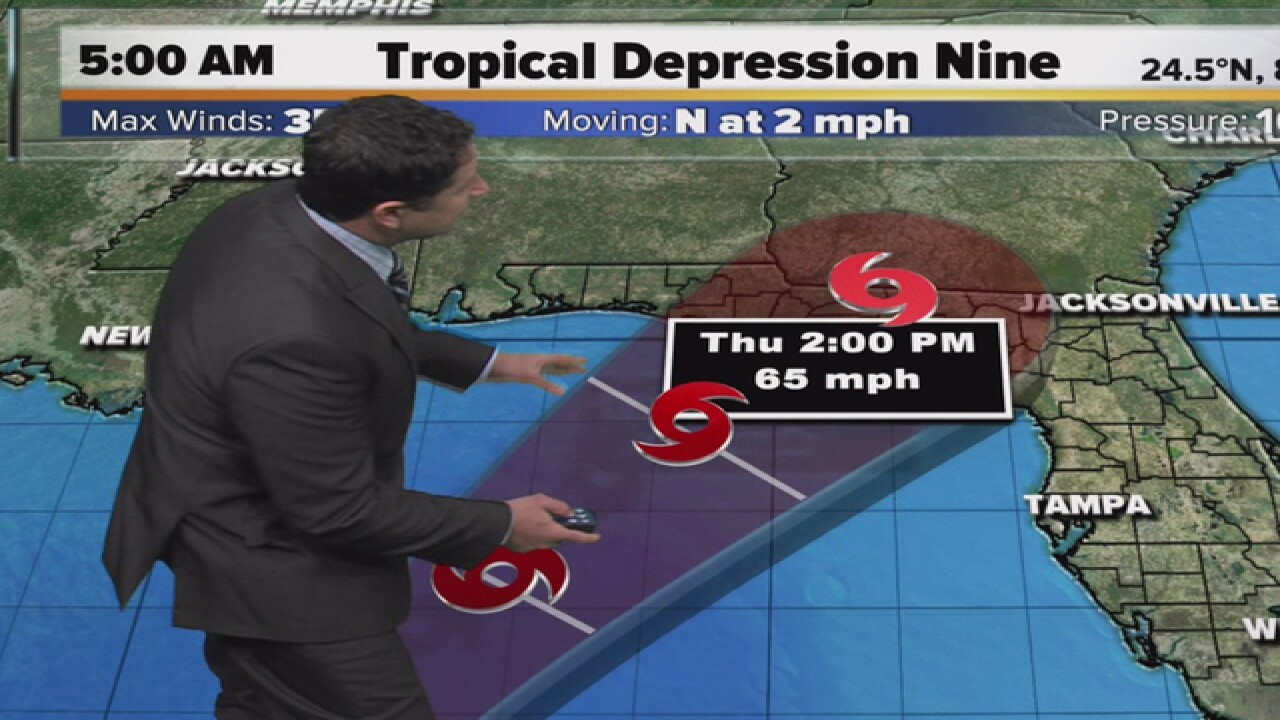 Tropical storm warning issued for parts of Florida