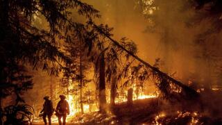western fires.jpeg