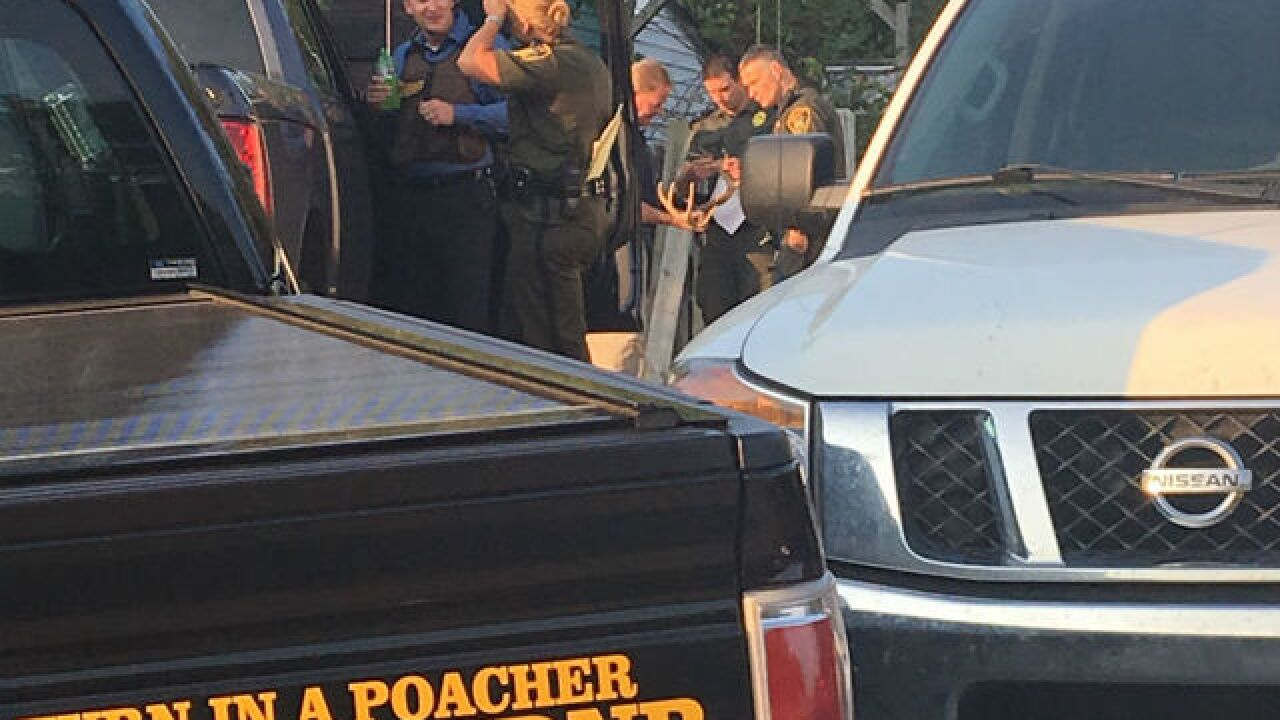 Indiana Dnr Raids Hendricks Co Taxidermy Business After Call 6