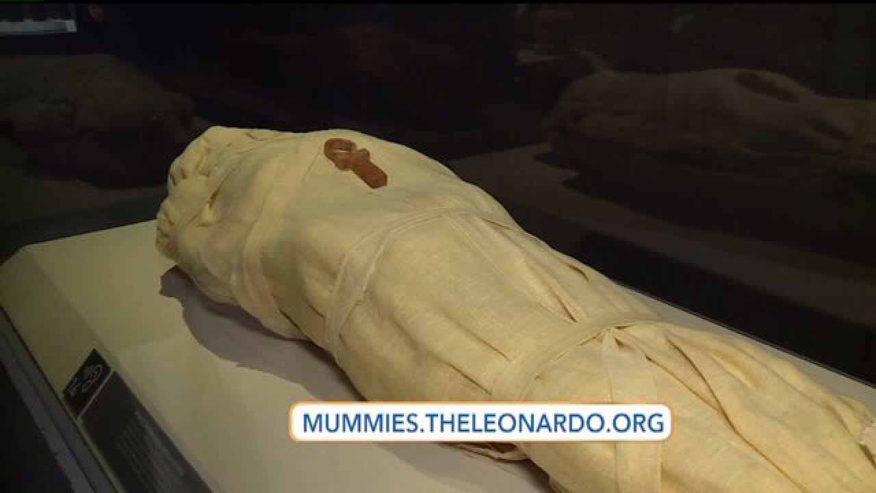 The story of the Maryland mummy that was preserved in1994