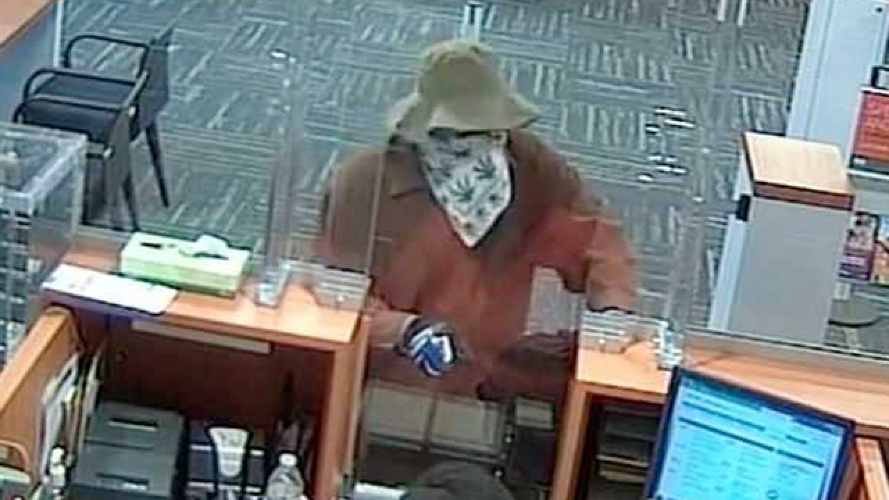FBI searching for 'Cover-Up Bandit'