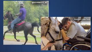 Devin White Equine Therapy