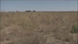 Montana Drought Emergency