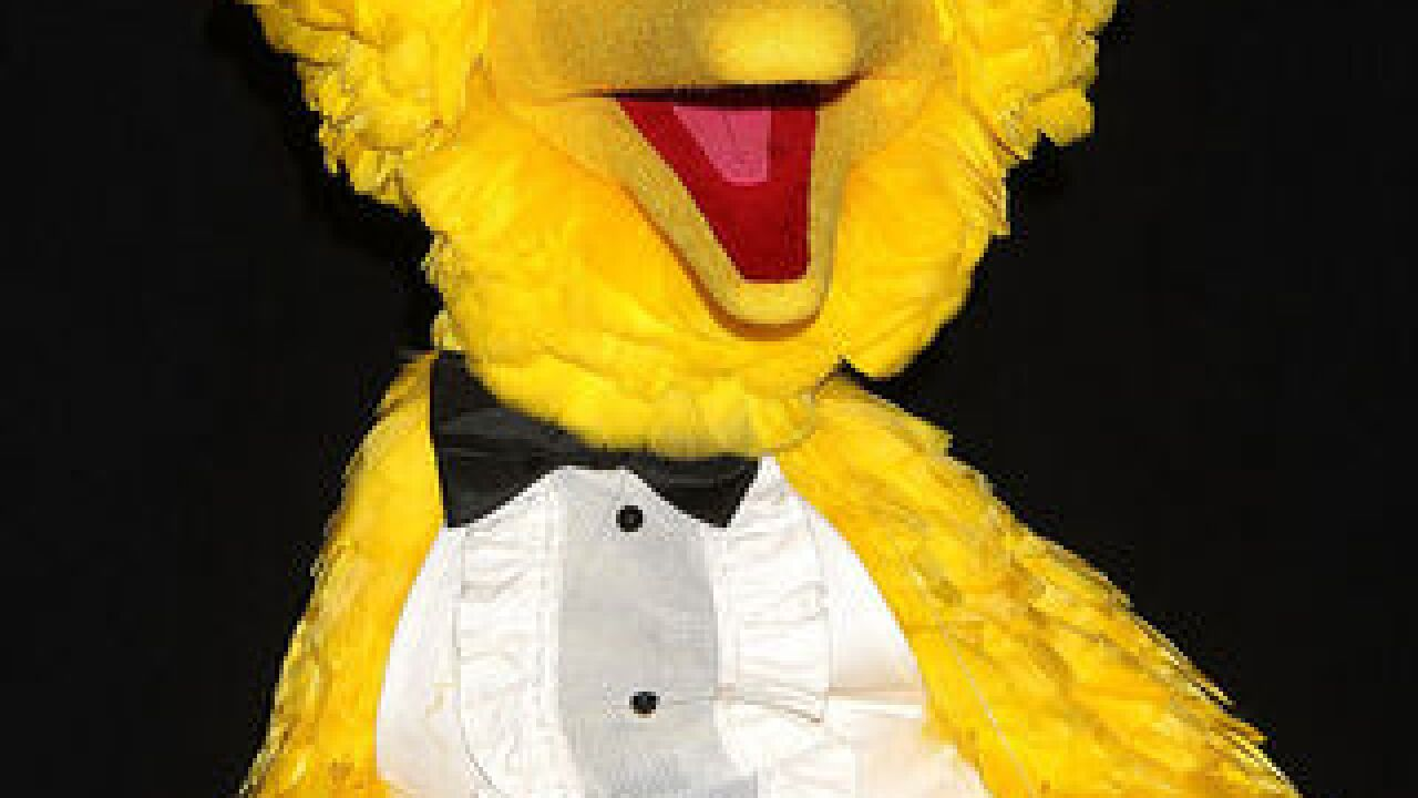 Bye, bye Big Bird: Actor stepping down from role