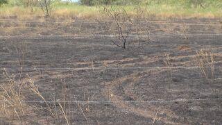 Wildfires starting despite burn ban
