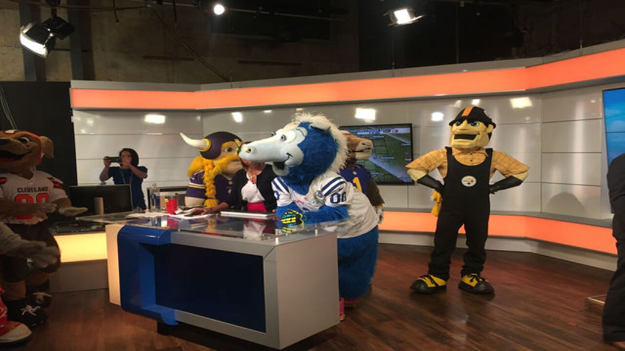 PHOTOS: NFL mascots take over RTV6