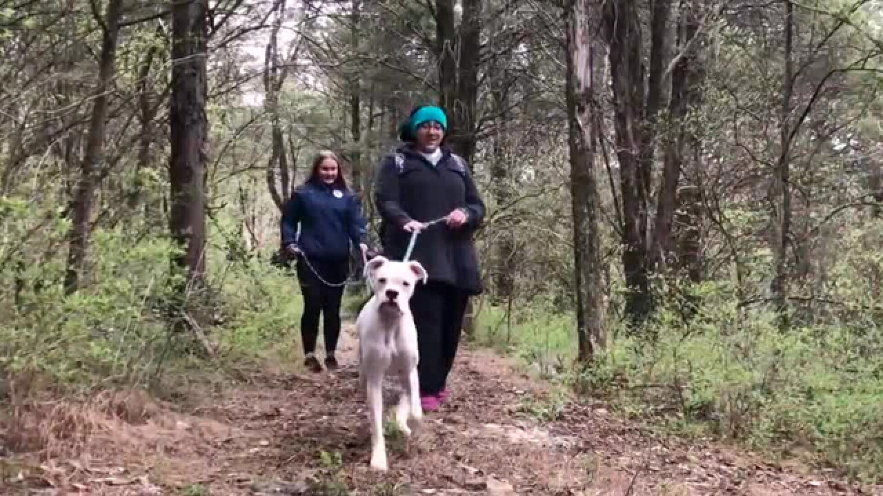 Tails Of The Trails Helps Shelter Dogs Get Exercise & Love