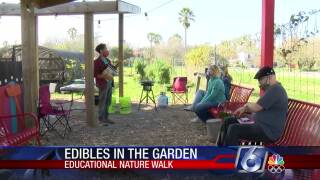 Local class teaches which wild plants are edible