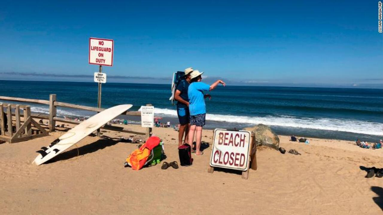 Cape Cod swimmer dies in likely shark attack