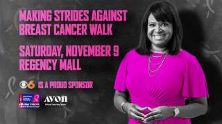 Weekend Events: Making Strides Against Breast Cancer, Hops in the Park &More