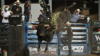 Jose Vitor Leme rides Chiseled for 94 points in Salt Lake City_Courtesy_AndyWatson_BullStockMedia.JPG