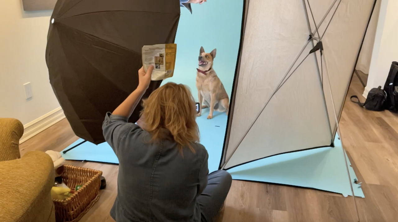 Diane Dultmeier during portrait session with dog