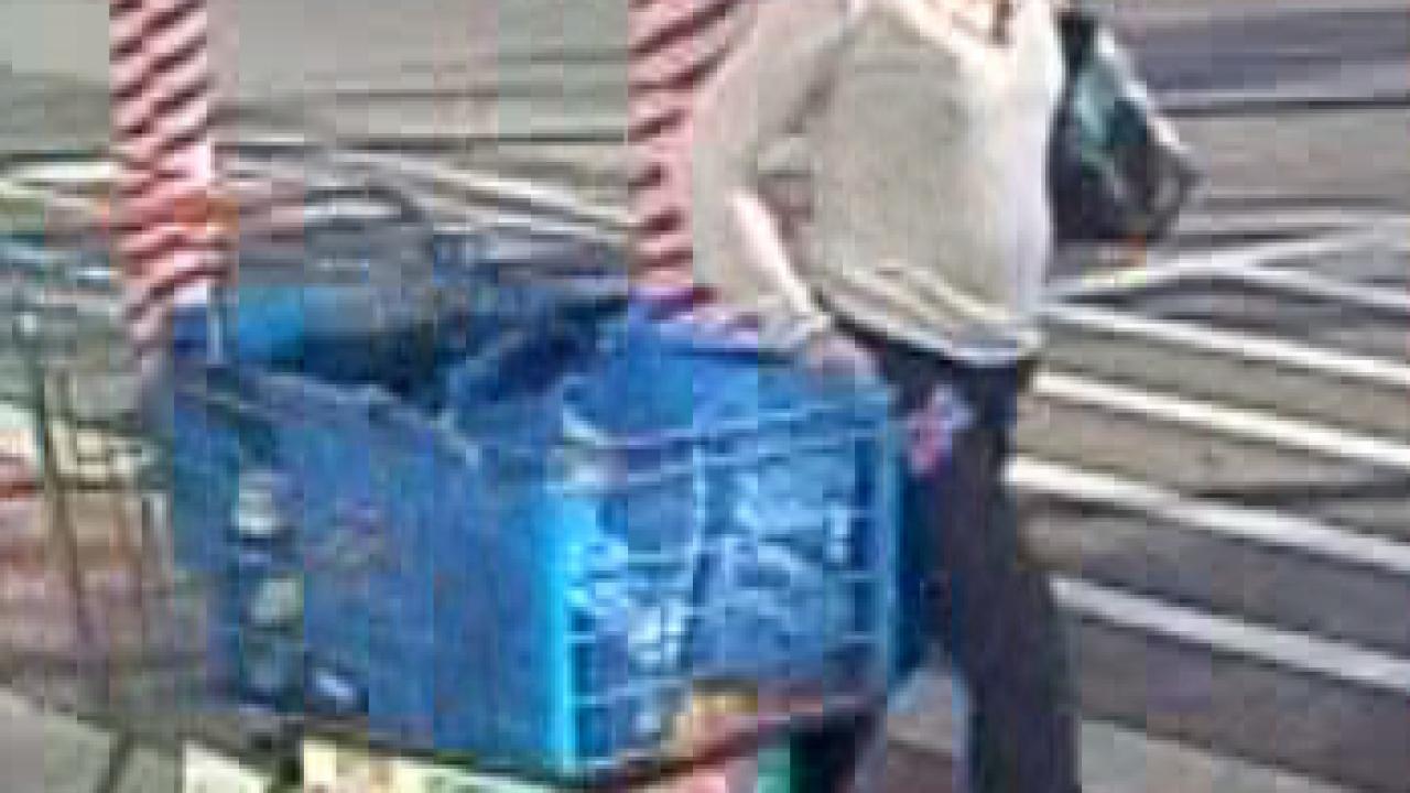 Punta Gorda Walmart thief 12-11-19 2.png