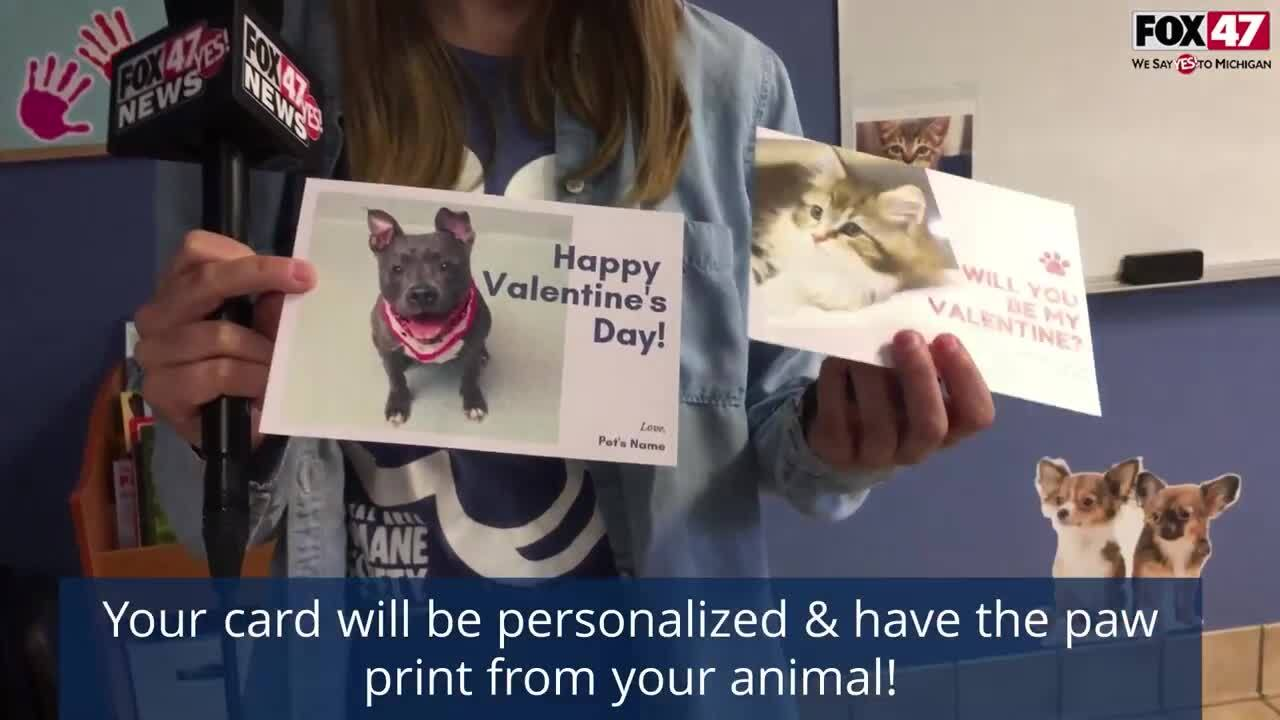CAHS Valentines Day