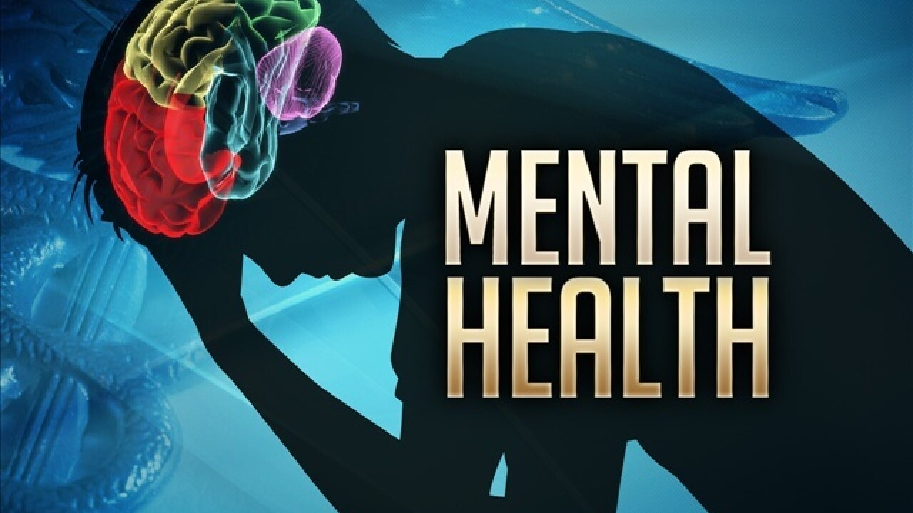 Hillsdale County voters approve mental health millage