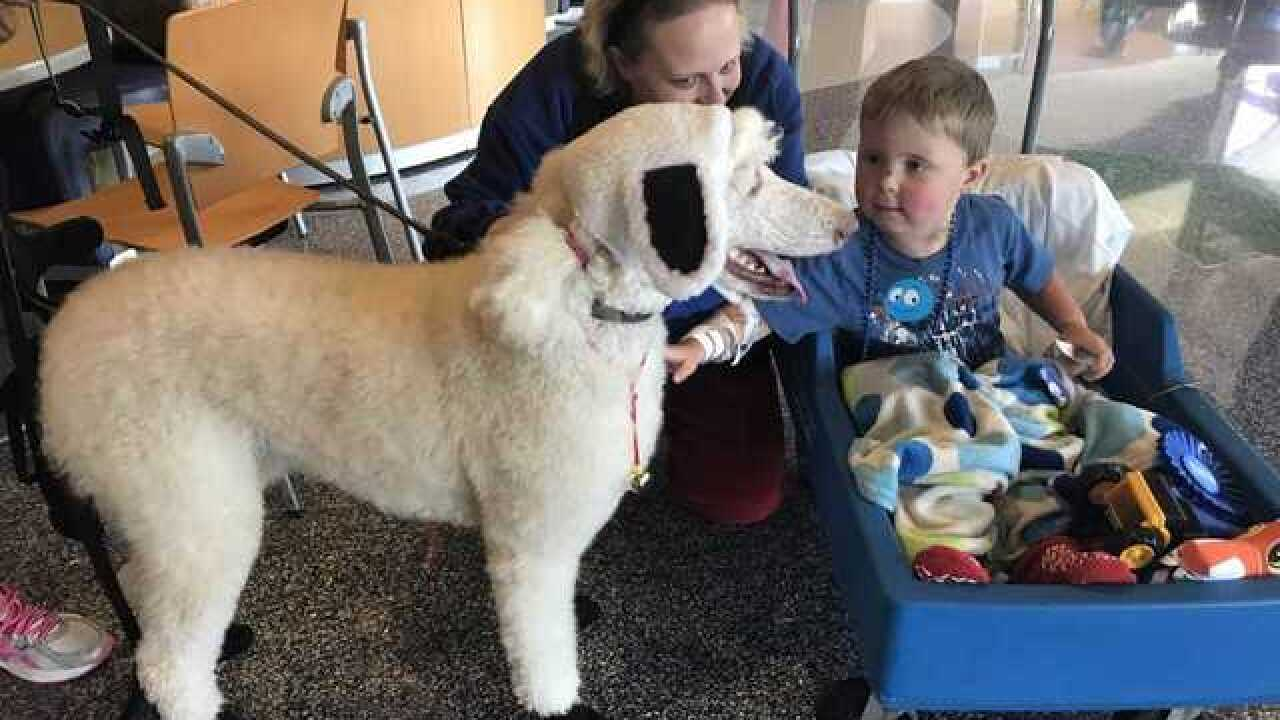State Fair comes to Children's Hospital