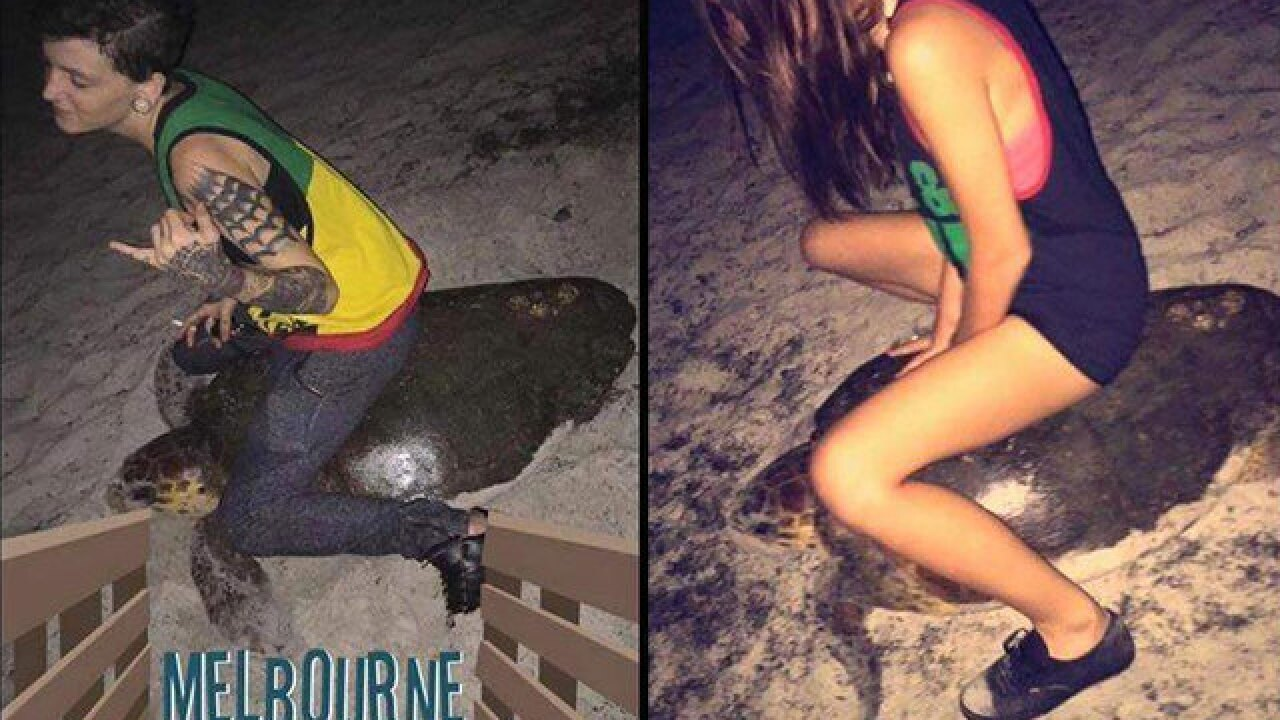Florida woman arrested after riding sea turtle