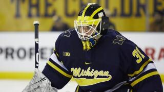 Michigan's Cameron York & Strauss Mann, Michigan State's Dennis Cesana named Preseason All-Big Ten