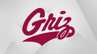 Montana Grizzlies logo